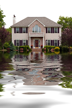 Importance Sump Pump Home
