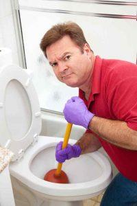 La Grange Toilet Repair Services