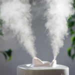The Importance of Humidifiers and Dehumidifiers
